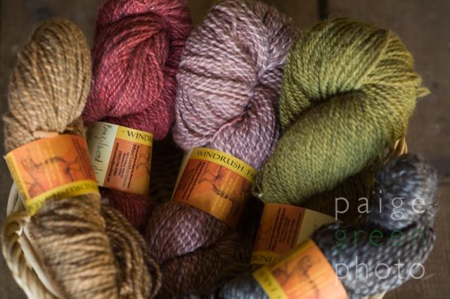 paigegreen-dye08_MG_0534