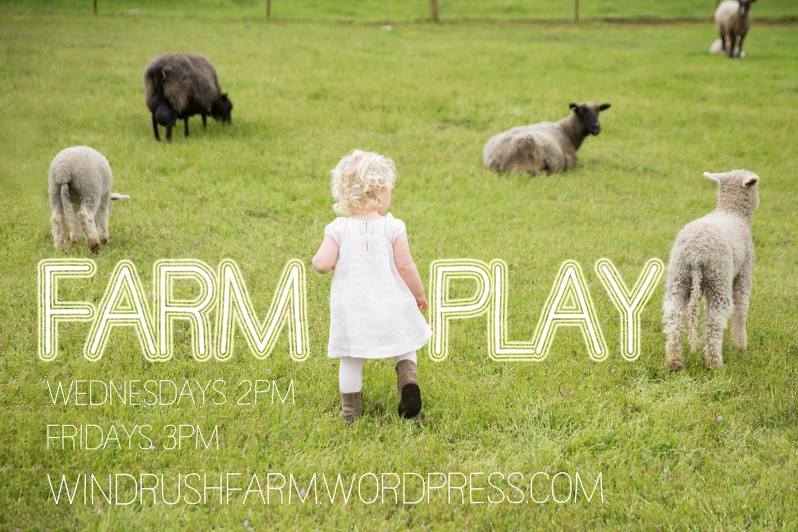 paigegreenTina04022016-075-FARMPLAY-4x6s
